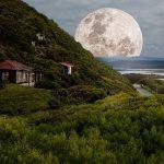 Astrología: el método de adivinación predilecto para poder ver el futuro