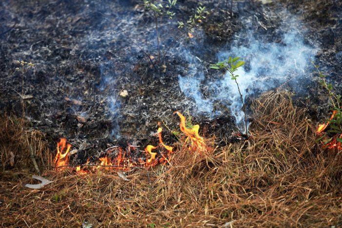 Medio Rural mantén ata novo aviso a prohibición de realizar queimas agrícolas e forestais polas condicións meteorolóxicas