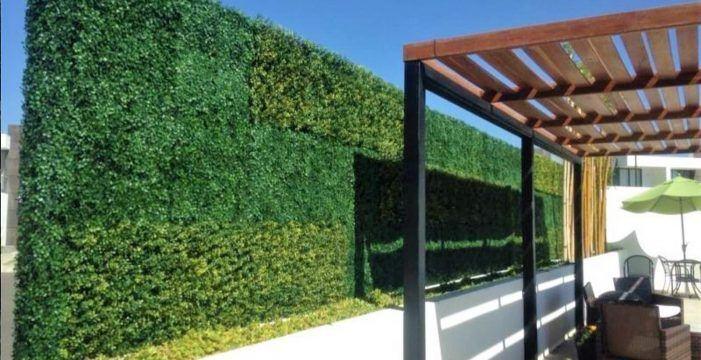Los muros verdes: tendencia decorativa en auge