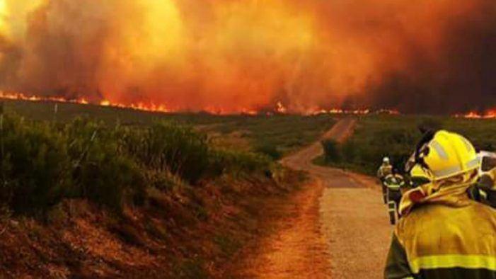 O Diario Oficial de Galicia publica hoxe a orde de axudas para a reparación de danos ocasionados pola vaga de lumes
