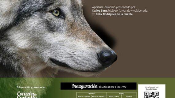 Dúas exposicións para amantes dos animais