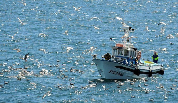 Mañá abre o prazo de matrícula para os exames das titulacións de mariñeiro pescador, patrón local de pesca e patrón costeiro polivalente