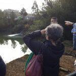 Lídia Senra denuncia ante a Comisión Europea o desbordamento da balsa mineira de Touro