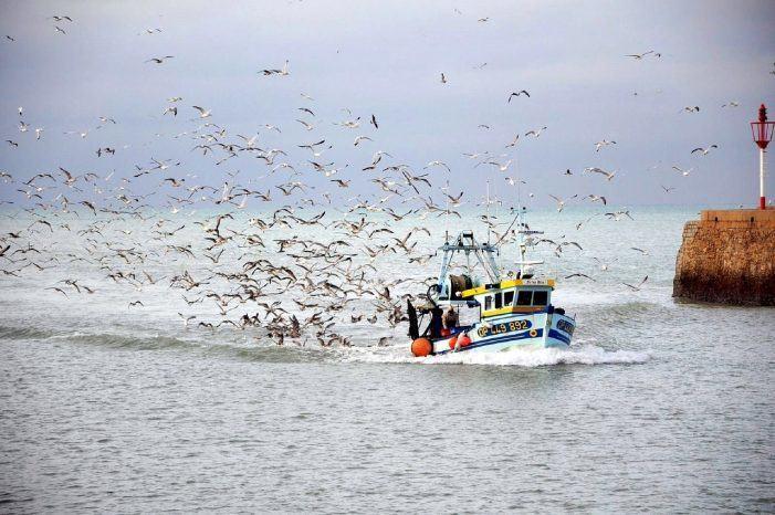 Denuncian o incremento de multas a pequenas embarcacións nas augas da Galiza