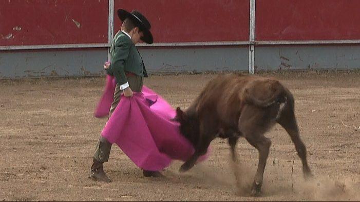 La ONU solicita a España que prohíba la participación de niños en corridas de toros