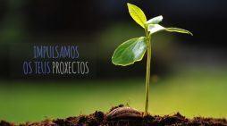 Novas xornadas de difusión do GDR Pontevedra Morrazo  sobre as axudas LEADER para apoiar proxectos que dinamicen o rural