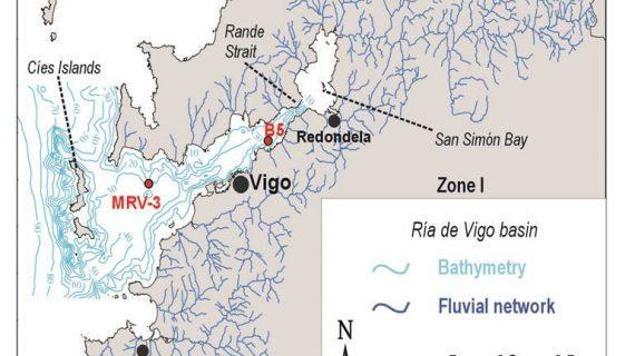 Un estudo analiza os bosques primixenios da ría de Vigo e explica a desaparición do carpe