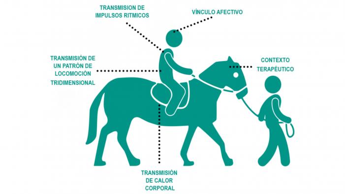 Los beneficios de la terapia con caballos, a estudio en el Aula UNED de Tui