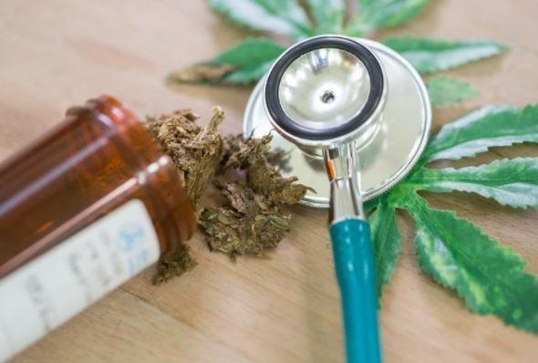 Las semillas medicinales de marihuana: aplicaciones que quizás no conocías