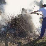 Medio Rural mantén ata novo aviso a prohibición de realizar queimas agrícolas e forestais pola variabilidade das previsións meteorolóxicas