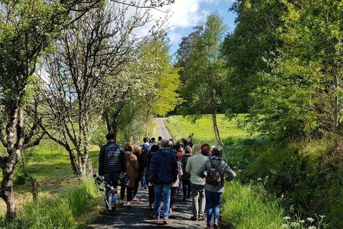 Éxito absoluto da primeira ruta Maceiras en Flor en Rías Baixas