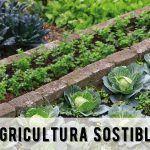 Comeza un curso de hortofruticultura sustentable no concello do Rosal e outro de apicultura sustentable no concello de Forcarei