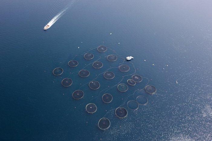 A Xunta convoca oito bolsas de formación e especialización marítimo- pesqueira