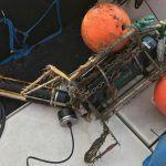 Primeira serie de medicións autónomas da acidificación na costa galega