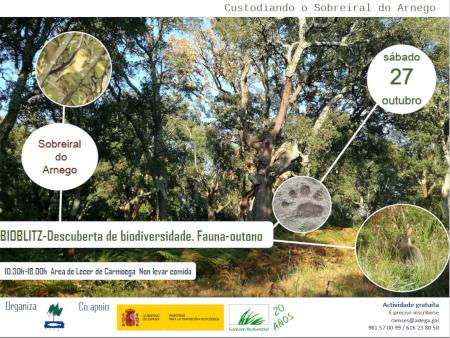 Descuberta de Biodiversidade polo Sobreiral do Arnego