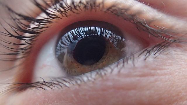 Primeros pasos para el uso de lentes
