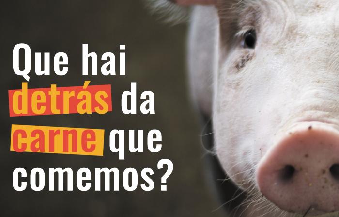Que hai detrás da carne que comemos?