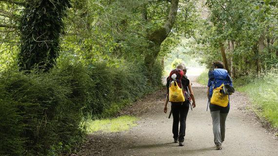 Grazas ao compromiso dos peregrinos este verán reciclouse un 28% máis no Camiño de Santiago