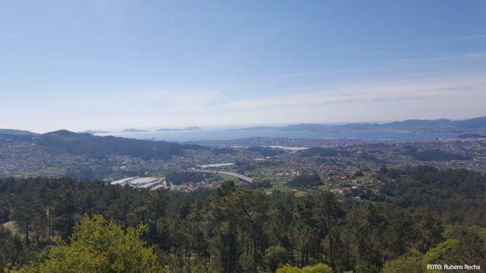 A Xunta aposta pola formación, a innovación e o deseño para a mellora da competitividade da industria forestal de Galicia