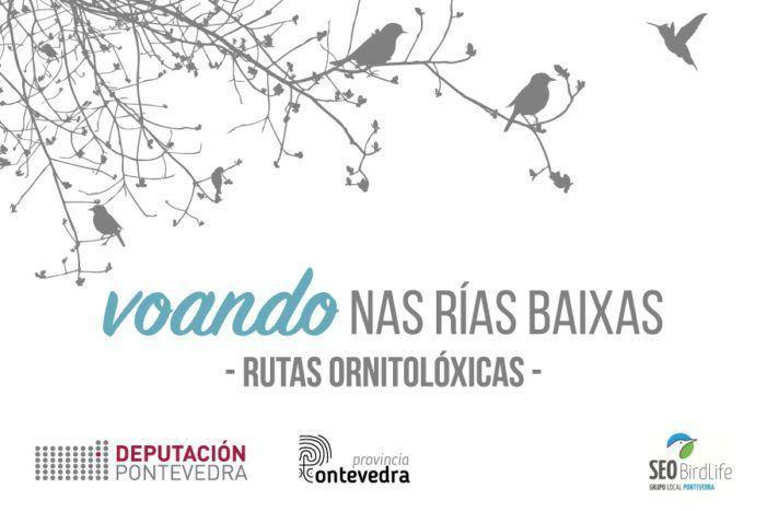 """Esgotadas en tres horas as prazas para a primeira ruta ornitolóxica de """"Voando nas Rías Baixas"""" 2019"""