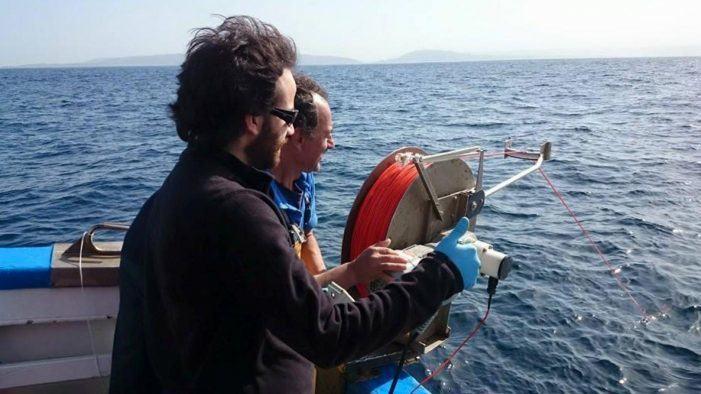 Descobren que as rías galegas fertilízanse con nitróxeno do aire