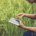 Beneficios de las nuevas tecnologías para emprender en el rural