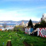 Que é o colectivo horta do Berbés?