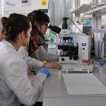 O Concello organiza obradoiros escolares para visibilizar a contribución da muller á ciencia