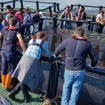 Volve á Ecimat unha nova edición do curso sobre xestión de explotacións acuícolas