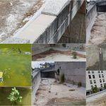 Denuncian o estado lamentable e de abandono que mostra Navia