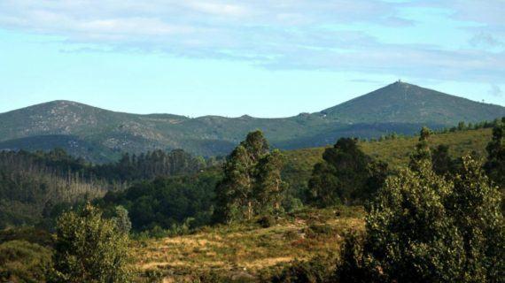 A Asociación pola defensa da ría advirte dos graves prexuízos que implicaría a execución do novo plan forestal galego que pretende aprobar a Xunta de Galicia