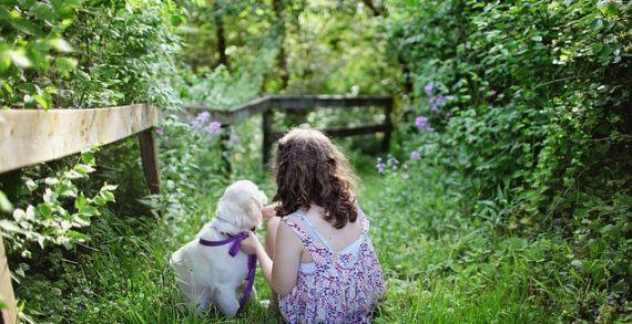 Estas son las mejores razas de perros si tienes niños