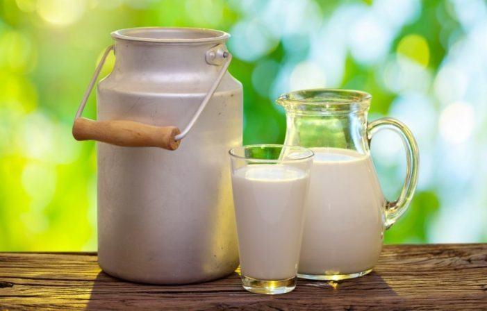 O Sindicato Labrego denuncia impagos de leite por parte de Logística Alimentaria a través da empresa TeGestacín SL