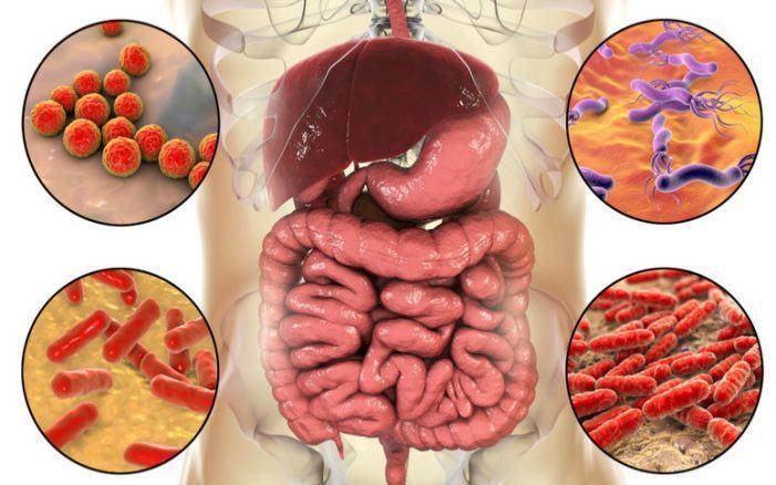 Consejos para evitar una infección por la bacteria E.coli