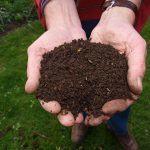 ¿Qué son los nutrientes orgánicos y para que se utilizan?