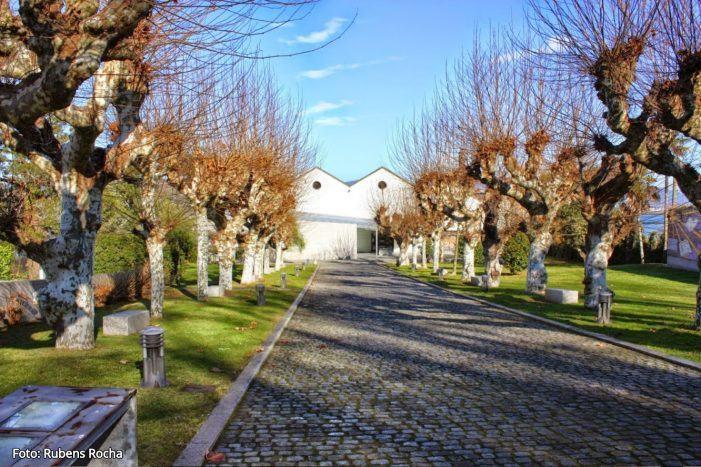 O Sinsal SON Estrella Galicia Museo do Mar de Galicia celebra a súa segunda edición
