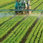 Abonados 6.718 millones de euros de las ayudas de la Política Agraria Común de la campaña 2019