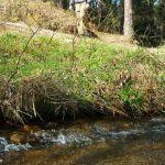 A Xunta publica no DOG o decreto que facilita a execución de obras menores de conservación e mantemento nas proximidades dos ríos sen autorización previa de augas de Galicia