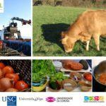 O campus acollerá a segunda Xornada de Riscos Emerxentes en Seguridade Alimentaria