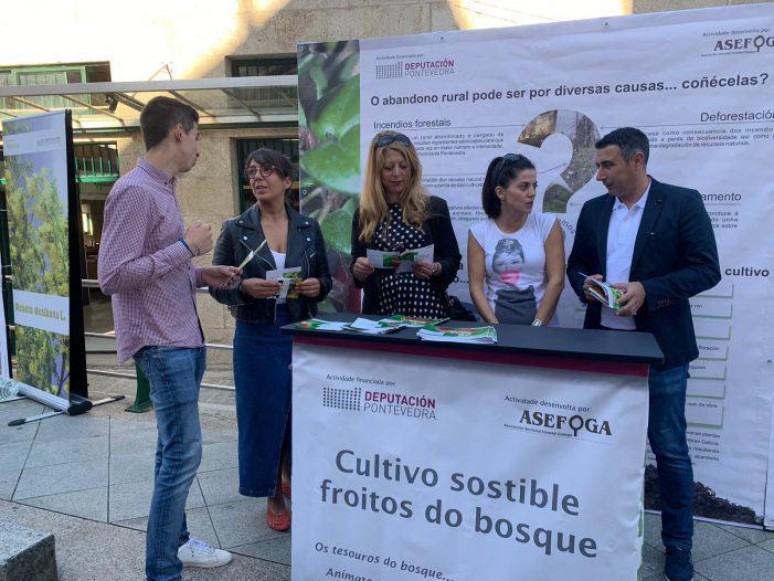 As campañas sustentables da Deputación para o control da acacia e o impulso ao cultivo de froitos de bosque chegan a Forcarei e Catoira