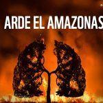 WWF denuncia a incesante deforestación á que se enfronta a  Amazonia