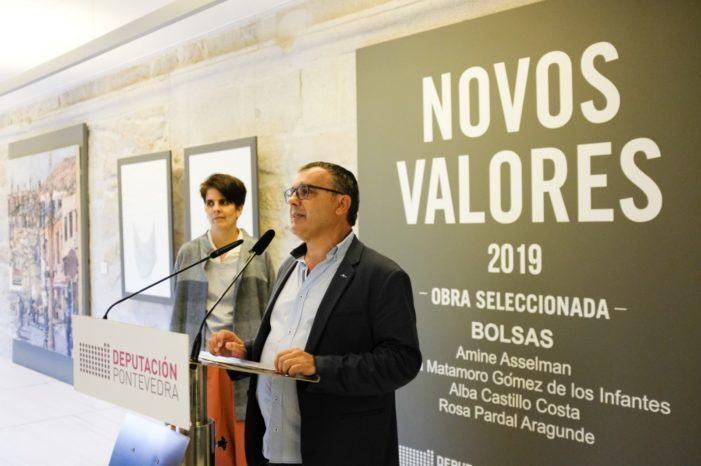 A mostra 'Novos Valores 2019′ pecha as súas portas no Museo de Pontevedra con preto de 7.500 visitas