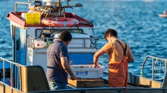 Os centros de ensino da Consellería do Mar ofertan máis de 40 cursos de formación marítima e de mergullo ata finais de ano