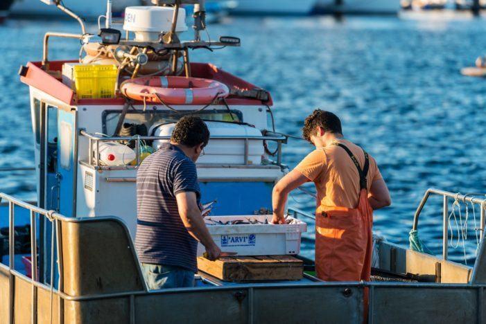 Hoxe comeza o prazo de matrícula para os exames de carácter libre das titulacións de mariñeiro pescador, patrón local de pesca e patrón costeiro polivalente