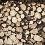 A Xunta impulsa a competitividade da industria forestal galega a través de 130 accións formativas