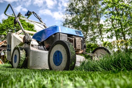 Herramientas básicas para cuidar tu jardín