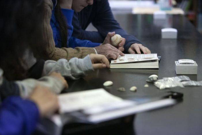 Educación recoñece o traballo de 18 centros educativos públicos participantes no VI Concurso de Traballos por Proxectos
