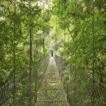 La preservación de la biodiversidad debe ser un eje fundamental de la Estrategia de Turismo Sostenible