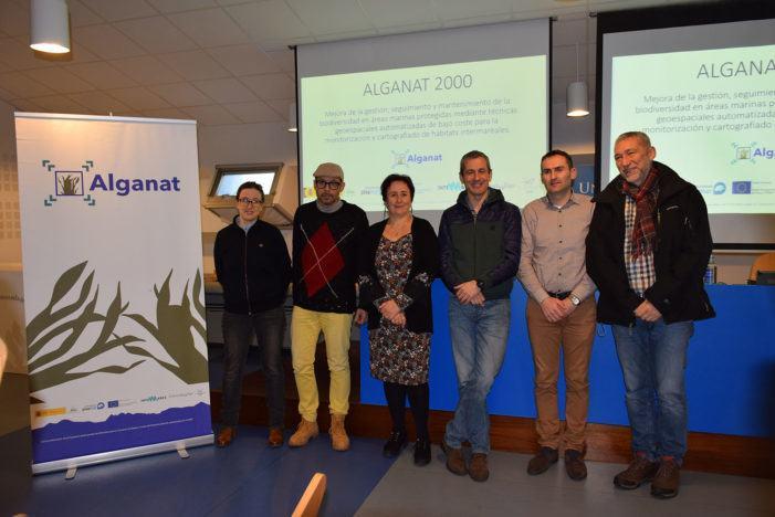 Especialistas vigueses crean unha ferramenta de uso libre para a clasificación de algas