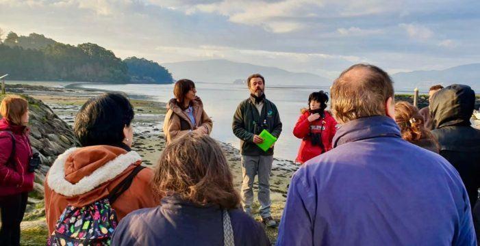 """A enseada de San Simón esceario da estrea das rutas da Deputación e Seo BirdLife """"Voando Rías Baixas 2020"""""""